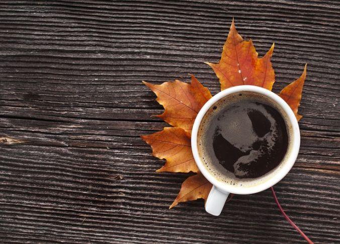 autumn cm